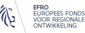 Sponsorlogo EFRO