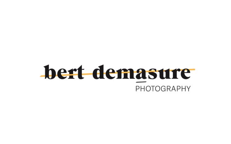Bert demasure